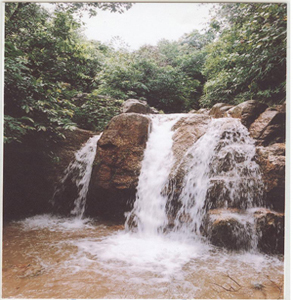 Suối Côn Sơn