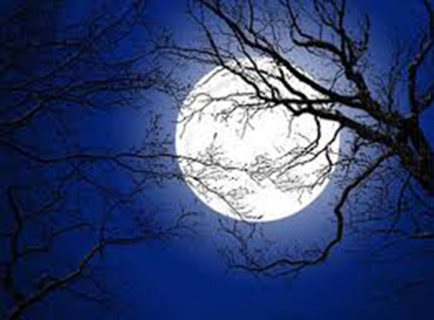 Lễ hội cầu trăng diễn ra vào đêm trăng rằm