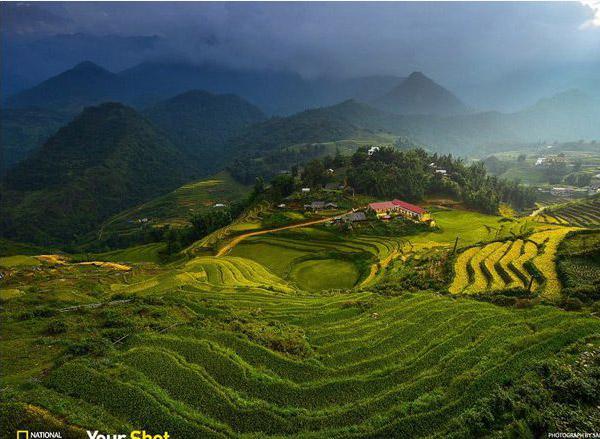 Bức ảnh chụp ruộng bậc thang Sapa lọt top 10 bức ảnh du lịch đẹp nhất
