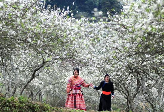 Chia sẻ cho bạn kinh nghiệm du lịch Mai Châu đầy đủ và chi tiết nhất