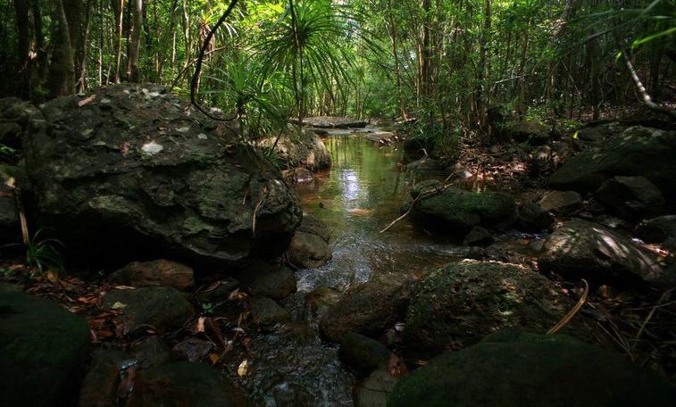 Suối Tranh Phú Quốc – tuyệt tác tạo hóa ban tặng