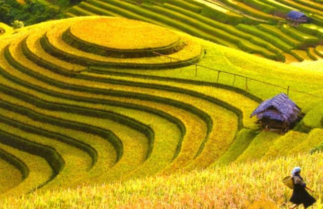 Khám phá 4 trải nghiệm tuyệt vời ở Hà Giang